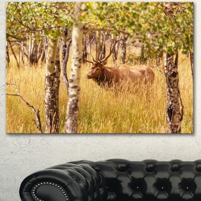Designart Deer In Thick Forest Grassland OversizedLandscape Canvas Art