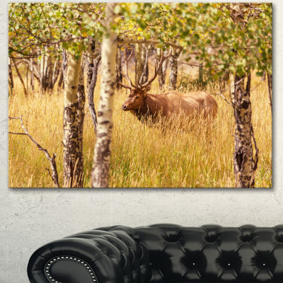 Designart Deer In Thick Forest Grassland OversizedLandscape Canvas Art - 3 Panels