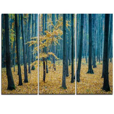 Designart Dense Autumn Beach Forest Oversized Forest Triptych Canvas Artwork