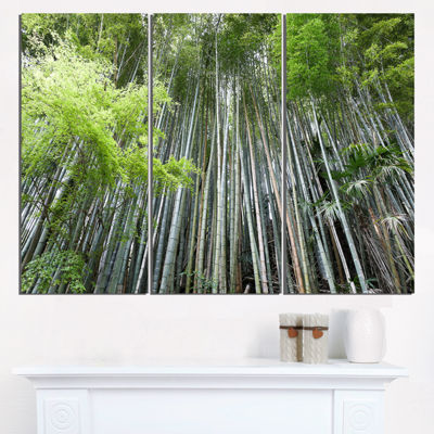 Designart Dense Bamboo Forest Of Japan Forest Triptych Canvas Wall Art Print