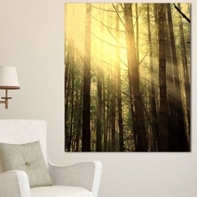 Designart Dense Green Sunny Forest Landscape Canvas Art Print