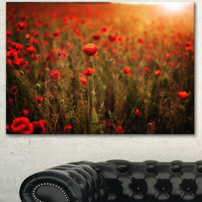 Designart Dense Poppy Field At Sunset Floral Canvas Art Print