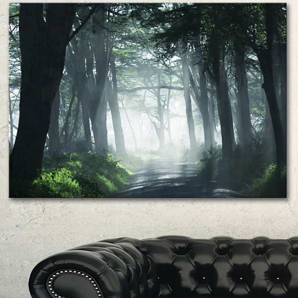 Design Art Dense Rain Forest At Sunrise Extra LargeLandscape Canvas Art