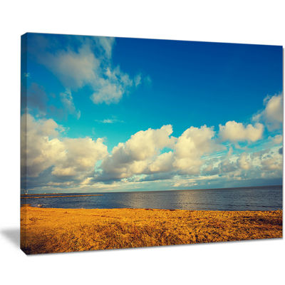 Designart Deserted Brown Sea Coastline Landscape Artwork Canvas
