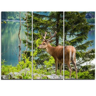 Designart Designart Deer Stag Near The Lake AnimalArt On Triptych Canvas