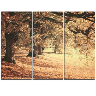 Designart Dreamy Imagery Of Autumn Forest Modern Forest Triptych Canvas Art