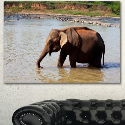Designart Elephant In Water In Sri Lanka Extra Large African Canvas Art Print - 3 Panels