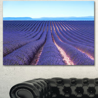 Designart Endless Rows Of Lavender Flowers FloralCanvas Art Print - 3 Panels