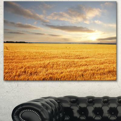 Designart Expansive Brown Field Landscape Canvas Art Print - 3 Panels