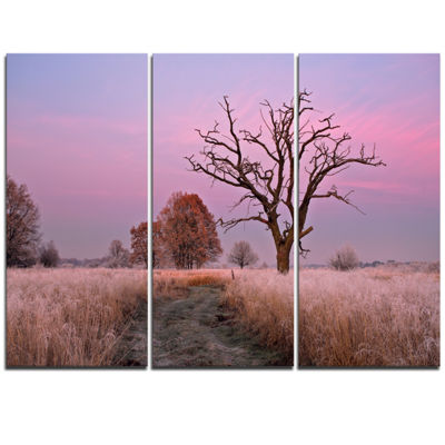 Designart Fairy Autumn Sunrise With Lonely Tree Landscape Print Wall Artwork