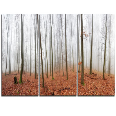 Designart Fall Forest With Trees At Mist OversizedForest Triptych Canvas Artwork