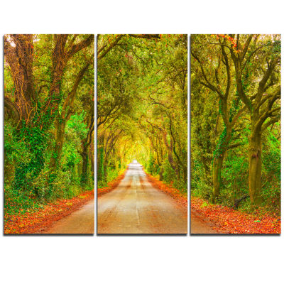 Designart Fall Greenery And Road Straight Ahead Oversized Forest Triptych Canvas Art