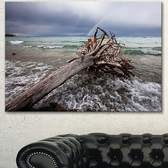 Designart Fallen Tree In Storm At Seashore Seascape Canvas Art Print