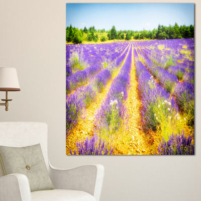 Designart Fantastic Lavender Field Of France Floral Canvas Art Print - 3 Panels