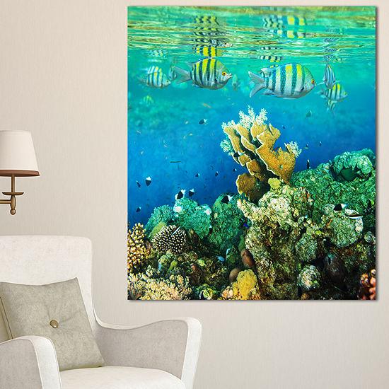 Designart Fantastic Red Sea Coral Fish Seashore Canvas Art Print