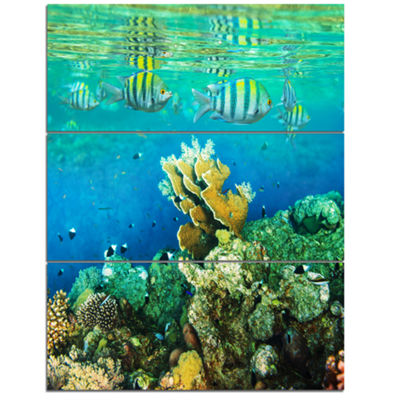 Designart Fantastic Red Sea Coral Fish Seashore Canvas Art Print - 3 Panels