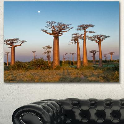 Designart Field Of Boababs Under Clam Sky Oversized African Landscape Canvas Art