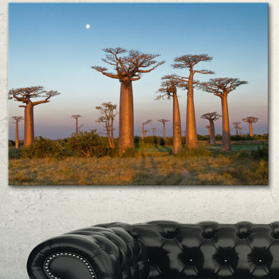 Designart Field Of Boababs Under Clam Sky Oversized African Landscape Canvas Art - 3 Panels