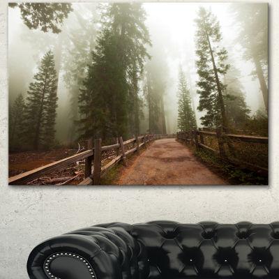 Designart Foggy Sequoya National Park Oversized Landscape Canvas Art