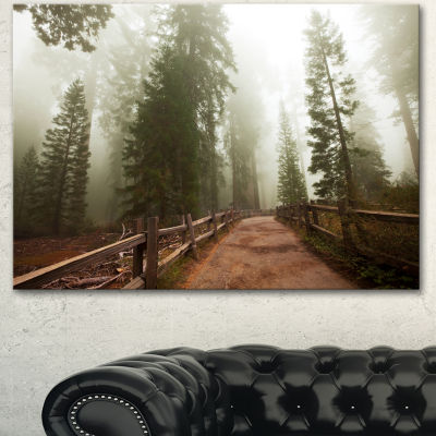 Designart Foggy Sequoya National Park Oversized Landscape Canvas Art - 3 Panels