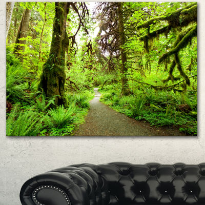 Designart Footpath In Redwood Rain Forest Landscape Canvas Art Print