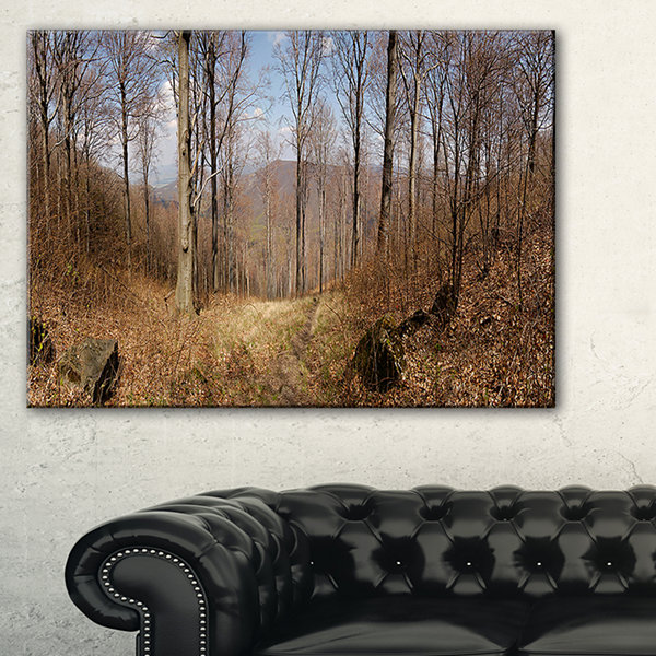Designart Forest Scenery With Bare Trees Modern Forest Canvas Wall Art
