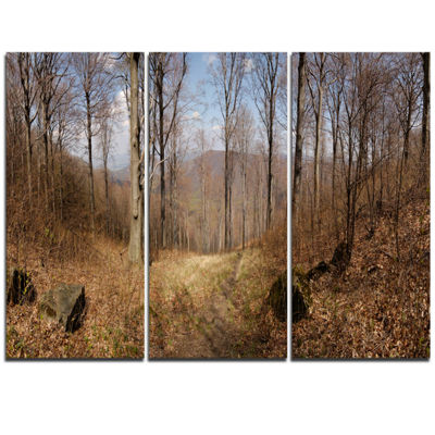 Designart Forest Scenery With Bare Trees Modern Forest Triptych Canvas Wall Art