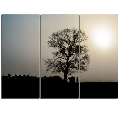 Designart Frosty Spring Morning Sunrise With TreeLandscape Triptych Canvas Art Print