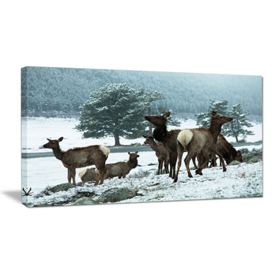 Designart Gang Of Deer In Rocky Mountains Extra Large Landscape Canvas Art