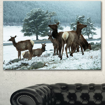 Designart Gang Of Deer In Rocky Mountains Extra Large Landscape Canvas Art