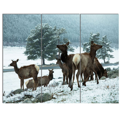 Designart Gang Of Deer In Rocky Mountains Extra Large Landscape Canvas Art - 3 Panels