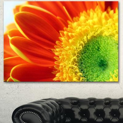 Designart Gerber Daisy Flower Petals Floral CanvasArt Print