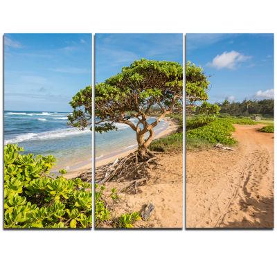 Designart Green Tree On Beach In Kauai Hawaii Seashore Triptych Canvas Art Print