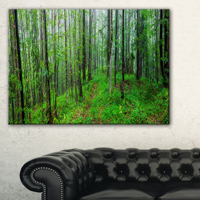Designart Green Wild Forest With Dense Trees Forest Canvas Art Print