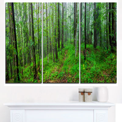 Designart Green Wild Forest With Dense Trees Forest Triptych Canvas Art Print