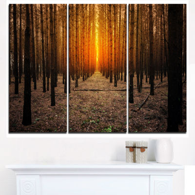 Designart Halloween Themed Spooky Dark Forest Oversized Forest Triptych Canvas Art