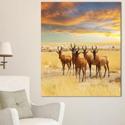 Designart Herd Of Antelope In Grassland Extra Large African Canvas Art Print - 3 Panels