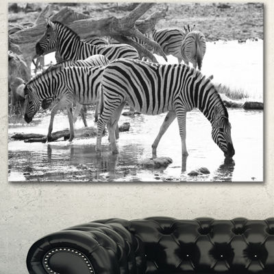 Designart Herd Of Zebra Black And White African Canvas Art Print