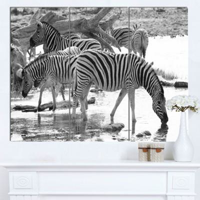 Designart Herd Of Zebra Black And White African Canvas Art Print - 3 Panels