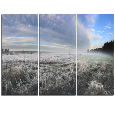 Designart Hoarfrost On Grass Under Cloudy Sky Landscape Print Wall Artwork