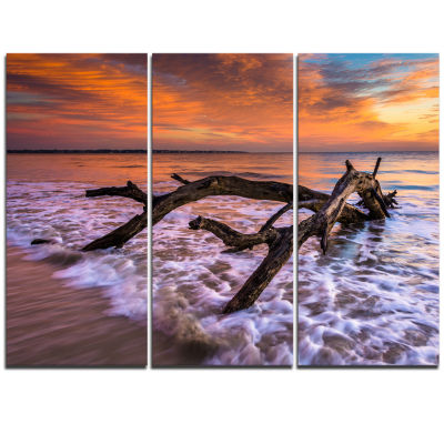 Designart Huge Branch Of Tree At Seashore Beach Photo Triptych Canvas Print