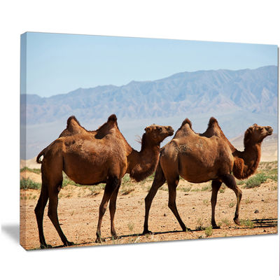 Designart Huge Camels On Tomb Ruins African CanvasArt Print