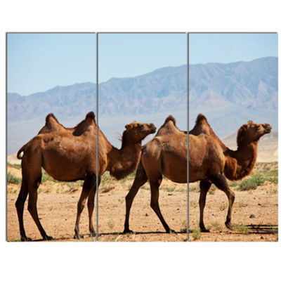 Designart Huge Camels On Tomb Ruins African CanvasArt Print - 3 Panels