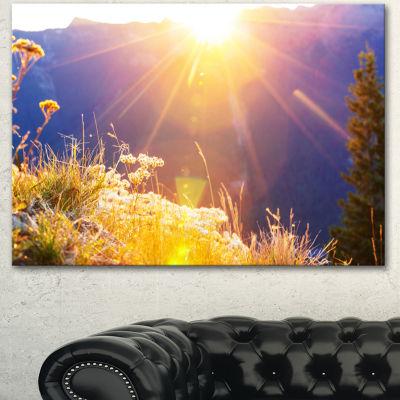 Designart Rural Meadow Flowers At Sunset LandscapeCanvas Art Print