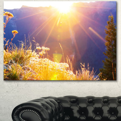 Designart Rural Meadow Flowers At Sunset LandscapeCanvas Art Print - 3 Panels