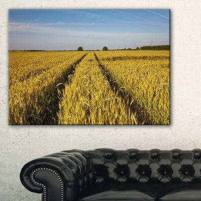 Designart Rural Road Through Wheat Field LandscapeArtwork Canvas