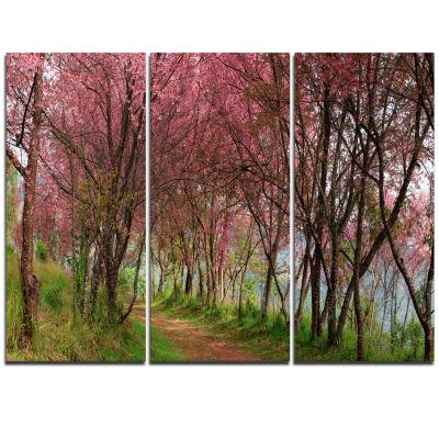 Designart Sakura Pink Flowers In Thailand Landscape Triptych Canvas Art Print