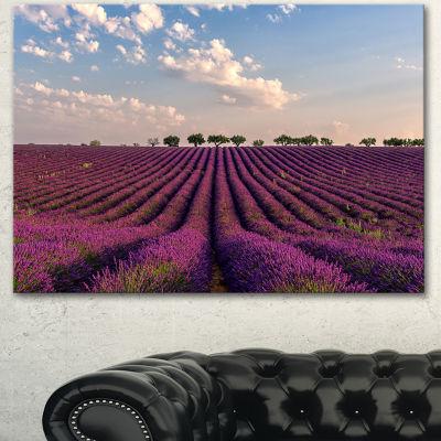 Designart Shiny Lavender Field In Provence Landscape Canvas Wall Art - 3 Panels