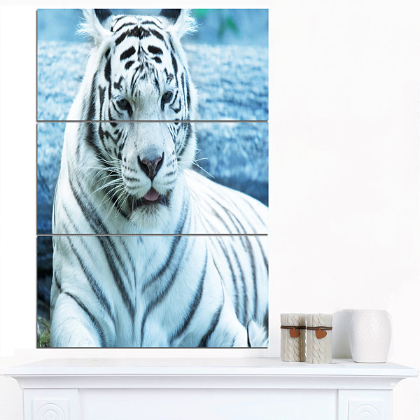 Designart Silver Tiger With Water Background African Canvas Art Print - 3 Panels
