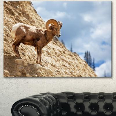 Designart Single Goat On Rocky Mountain Animal Canvas Art Print - 3 Panels